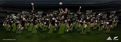 All Blacks 2013  Official Adidas Undefeated Team Poster.
