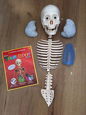 Nat Geo Billie Bones How Your Body Works Body Parts and 3 mags - good condition