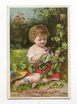 VICTORIAN Child Picking Berries NIAGARA CORN STARCH Trade Card 1885
