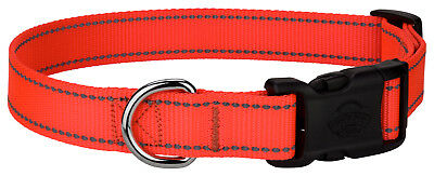 Country Brook Design® Deluxe Blaze Orange Reflective Nylon Dog Collar