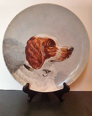 "ANTIQUE PORTRAIT PLATE of SPANIEL, Dog, 10"", signed"