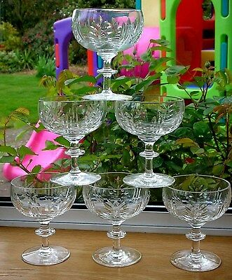 Set of 6 STUART(?)ROYAL BRIERLEY(?)WEBB CRYSTAL CHAMPAGNE GLASSES 10.5cms High