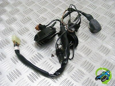 Suzuki Gsxr1000 Gsxr 1000 K5 2005 Front Headlight / Dash Loom *free Uk Post*