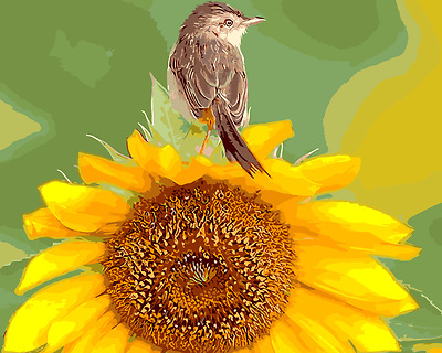 Framed Painting by Number kit The Bird on The Sunflower Little Animal DIY MB7152