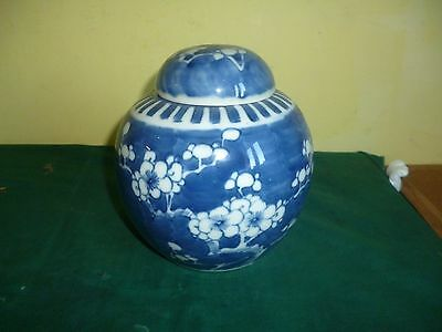 19th Century Chinese Prunus Ginger Jar Double Circle Kangxi Mark