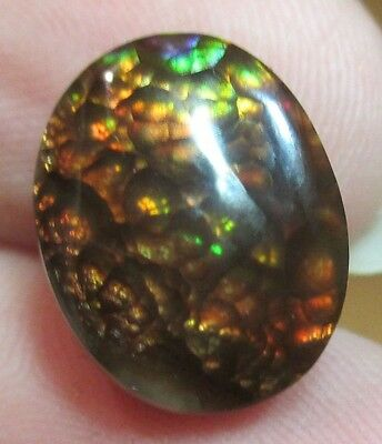 MEXICAN Fire Agate Gemstone Free form Natural Multicolored 12x10