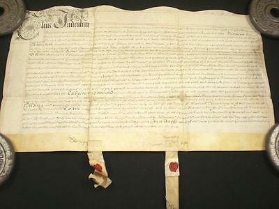 1689 Ornate Vellum Indenture, Charlton Horethorne, Somerset & Seals, A-Grade