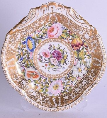 rare derby porcelain shell shaped dish - painted by harry samson hancock - plate