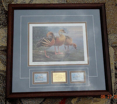 1990 Federal Duck Stamp Print Plumed Whistling Duck First Of Nation Australia
