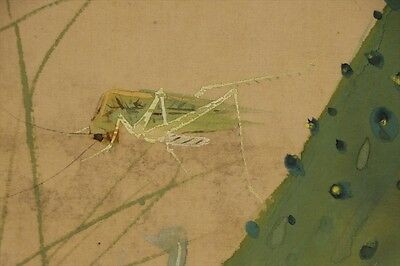 "JAPANESE HANGING SCROLL ART Painting ""Grass hopper"" Asian antique  #E5817"