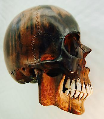 SKULL - Art - Antique Rare - Wood & Bone.