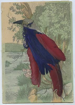C1907 Printed Painted Coloured Feather Applique Postcard H53