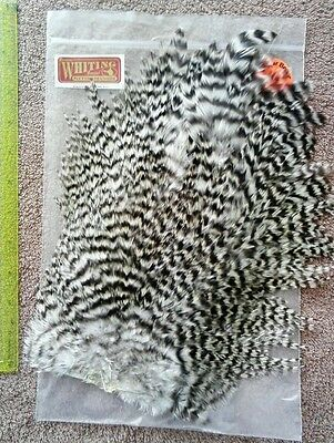 Whiting Grizzly Rooster Saddle Fly Tying Materials