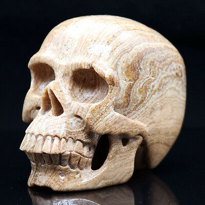 """4.92"""" PICTURE JASPER Carved Crystal Skull, Realistic,Crystal Healing AI28"""