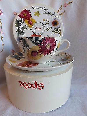 "Beautiful Vintage Spode Flowers Of The Month ""november"" Huge Cup & Saucer Boxed"