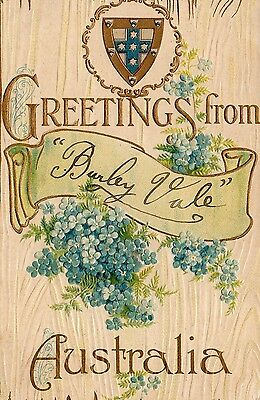 OLD BB POSTCARD 1900's - GREETINGS FROM AUSTRALIA - BURLEY VALE