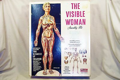 "Renwal ""The Visible Woman"" 1/5 Scale Anatomy Model Vintage 1960 Complete 5185"