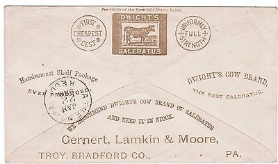 Cow Illustrated Advertising, overall back, Troy, PA to Athens, PA, 1880s