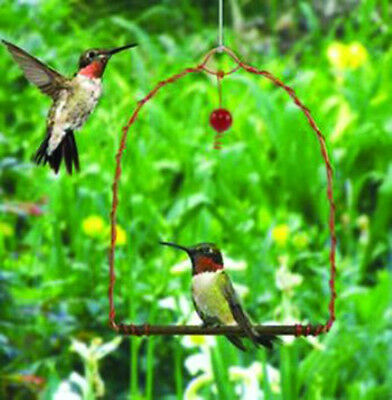 Hummingbird Swing New Copper Material Include Red Glass Bead That Attracts Birds