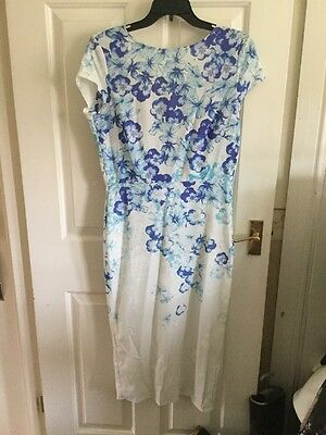 Blue And White Size 14 True Violet Dress