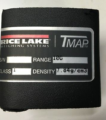 TMAP Rice Lake Weighing Systems Metric 10g Calibration  Weight