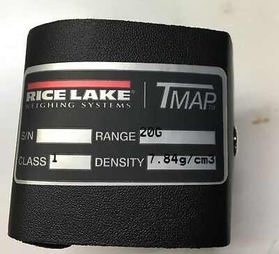 Rice Lake Weighing Systems Metric 20g Calibration  Weight