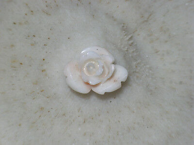 Beauty Hand CARVING CAMEO ~(coral) ~21mm*17mm.Rose(ec288).