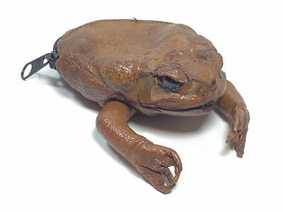 "Vintage taxidermy frog  ""Philippines Tagaytay City""  souvenir change purse"