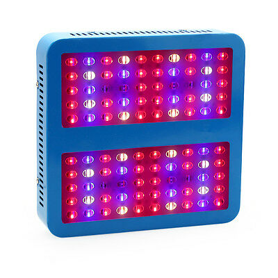 1000W LED Grow Light Full Spectrum Indoor Kits for Medical Plants Veg and Bloom