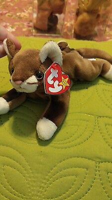 Ty beanie baby Pounce with multiple ERRORS