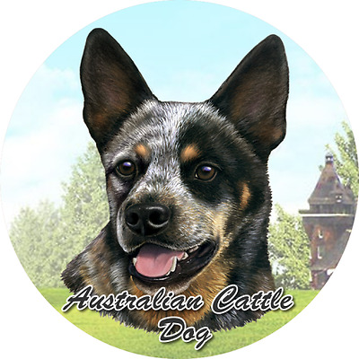 Australian Cattle Dog 2Ct Car Coasters