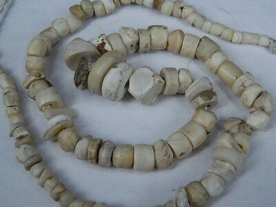 Ancient Shell/Bone Beads Strand Roman 200 BC   #BE5132