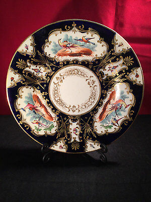 Coalport Cabinet Plate c1820 - Birds & Insects