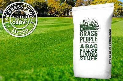 SUPERSTAR: Back Lawn Grass Seed   Lawn Seed   Premium Quality   Easy to Grow