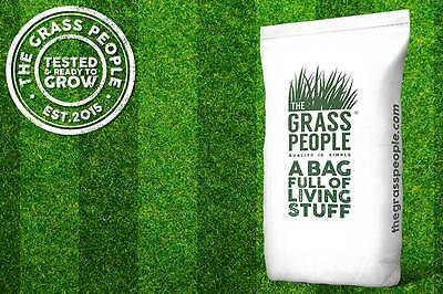 STATEMENT: Front Lawn Grass Seed   Lawn Seed   Premium Quality   Easy to Grow