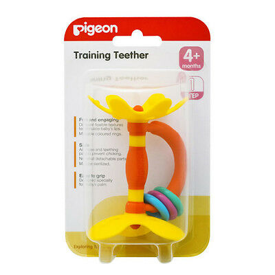 Pigeon Teether Training Step 1 or 2