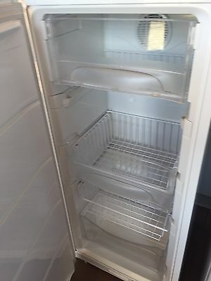 Fisher And Paykel Frost Free Upright Freezer