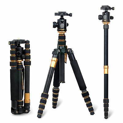 Professional Carbon Fiber Travel Tripod Ball Head monopod for camera/camcorder