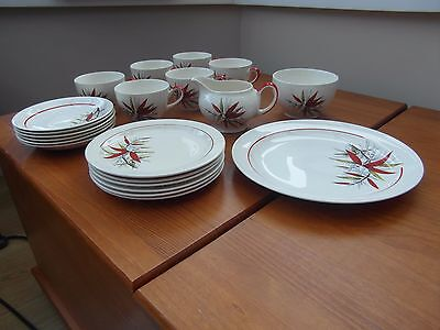 Midwinter Stylecraft Classic Shape 6 Cup Saucer Plates Red Yellow Leaves Branch