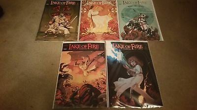 Lake Of Fire 1 2 3 4 5  Variant Covers - Complete Set - Marvel Series - Boarded