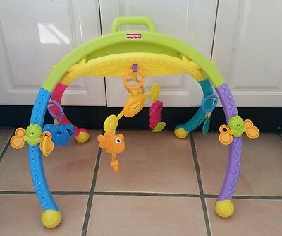 Fisher price take along baby playgym.  Baby play gym
