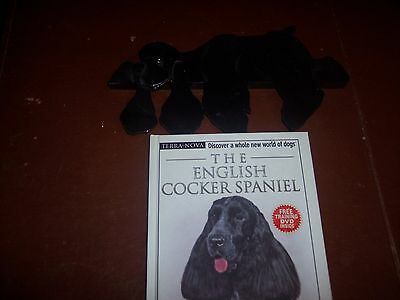 The English Cocker Spaniel with Training Video and a Wood Door Frame Dog
