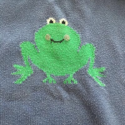Tootsa MacGinty Boys Jumper Sweater Pullover Top Blue Frog 3-4 Years