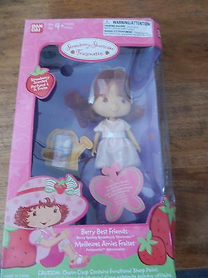 2003 Strawberry Shortcake Berry Best Friends Meilleures Fraises Great Gift New