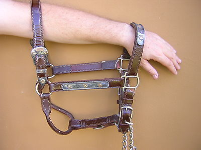 Rare Vintage Mexican Western STERLING SILVER + GOLD Horse Show Halter Headstall