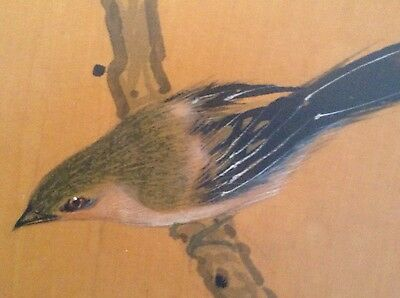 ANTIQUE ASIAN CHINESE JAPANESE ORIGINAL WATERCOLOR Bird SILK Early 1900's Framed