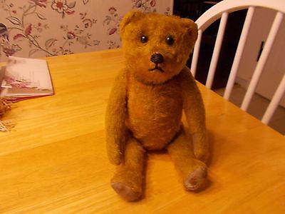 Early 1900S Small Sized Schuco Yes No Bear Golden Color All Original Very Cute
