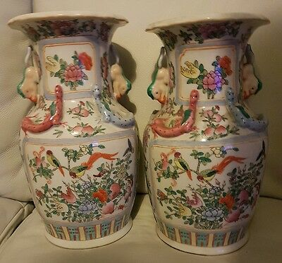 PAIR OF LARGE 35cm 19TH C CHINESE PORCELAIN FAMILLE ROSE BIRDS & LIZARDS VASES