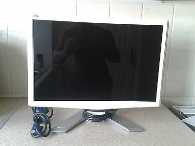 """Acer P193W 19""""  Widescreen LCD Monitor"""