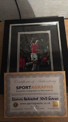 Dennis Bergkamp Arsenal signed framed 10x8 photo With COA